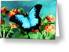 Blue Butterfly On Lantana Plant Oil Painting Greeting Card