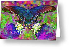 Blue Butterfly Pop Greeting Card