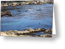 Blue California Bay Greeting Card