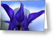 Blue Columbine I Greeting Card