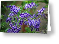 Blue Cottage Flowers Greeting Card
