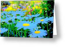 Blue Daisy Greeting Card