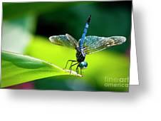 Blue Dragon II Greeting Card