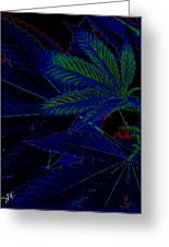 Blue Dream Greeting Card by Savannah Fonner