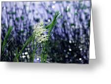 Blue Dreams Of Sunlight Greeting Card
