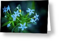 Blue Dreams Greeting Card