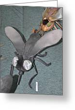 Blue Eyed Black Fly Greeting Card by Michael Jude Russo