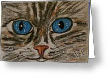 Blue Eyed Tiger Cat Greeting Card