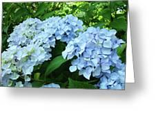 Blue Floral Hydrangea Flower Summer Garden Basle Troutman Greeting Card