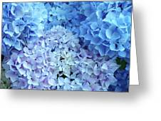Blue Floral Hydrangreas Flowers Art Baslee Troutman Greeting Card