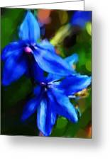Blue Flower 10-30-09 Greeting Card