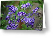 Blue Flowers Card Greeting Card