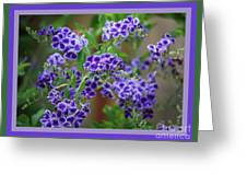 Blue Flowers With Colorful Border Greeting Card