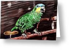 Blue-fronted Amazon Parrot Greeting Card