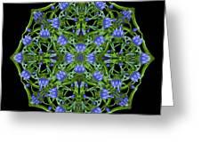 Blue Gentian Lattice Greeting Card