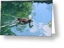 Blue Goose-1 Greeting Card