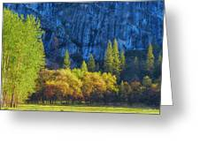 Blue Granite Greeting Card