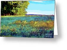 Blue Grass Sunny Day Greeting Card