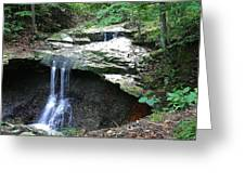 Blue Hen Falls Greeting Card