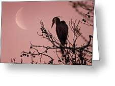 The Heron And The Moon Greeting Card