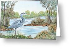 Blue Heron Of The Marshlands Greeting Card