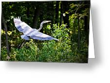 Blue Heron On The Move Greeting Card
