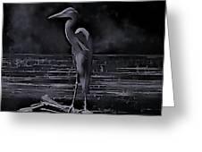 Blue Heron Pose Greeting Card