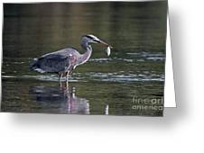 Blue Heron Snack Greeting Card