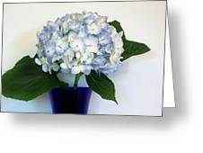 Blue Hue Hydrangea Greeting Card