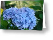 Blue Hydrangea Flower Art Prints Baslee Troutman Greeting Card