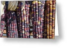 Blue Indian Corn Greeting Card