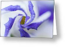 Blue Inspiration. Lisianthus Flower Macro Greeting Card