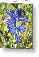 Blue Iris Painting Greeting Card