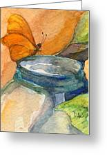 Blue Jar And Butterfly Greeting Card