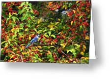 Blue Jay And Berries Greeting Card
