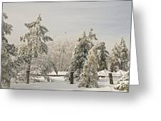 Blue Knob Winter Greeting Card