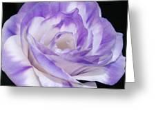 Blue Lisianthus Layered Loveliness II  Greeting Card
