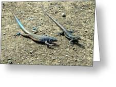 Blue Lizards Greeting Card
