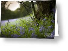 Blue Meadow Greeting Card