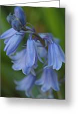 Blue Memories Greeting Card