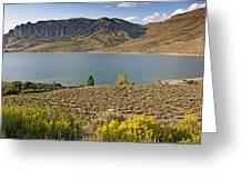 Blue Mesa Lake In Gunnison County Colorado Greeting Card