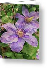 Blue Mist Clematis Greeting Card