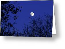 Blue Moon Among The Tree Tops Greeting Card