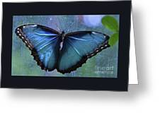 Blue Morpho Butterfly Portrait Greeting Card