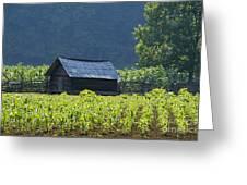 Blue Mountain Farm Greeting Card