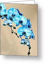 Blue Mystique Orchid Greeting Card