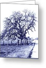 Blue Oak Greeting Card