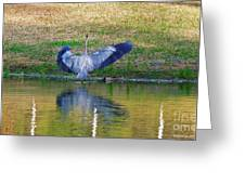Blue On The Bank Greeting Card