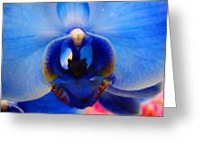 Blue Orchid Heart Greeting Card