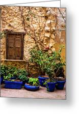 Blue-painted Plant Pots Greeting Card